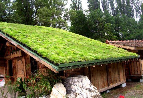 Créer une toiture végétalisée