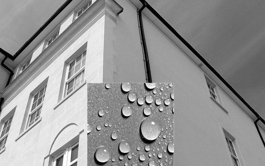 traitement antimousse et hydrofuge pour la façade, que choisir ?